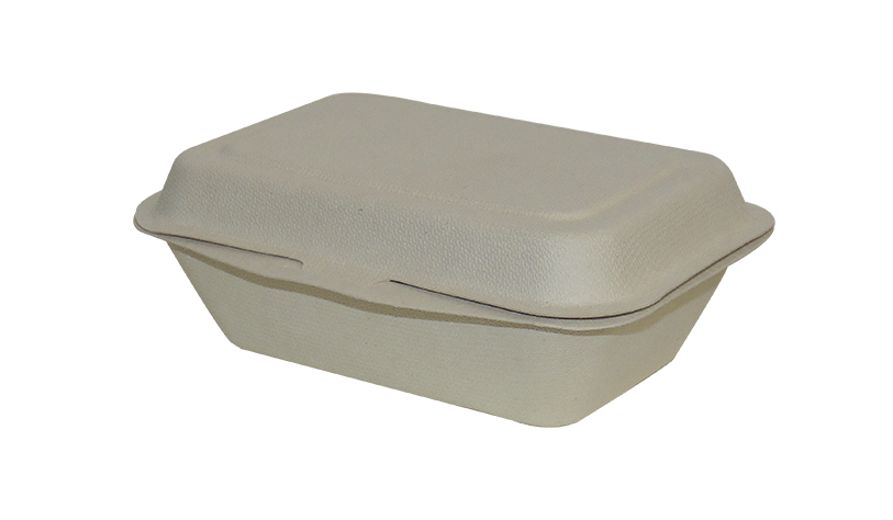 9″ x 6″ 2-C Hinged Container